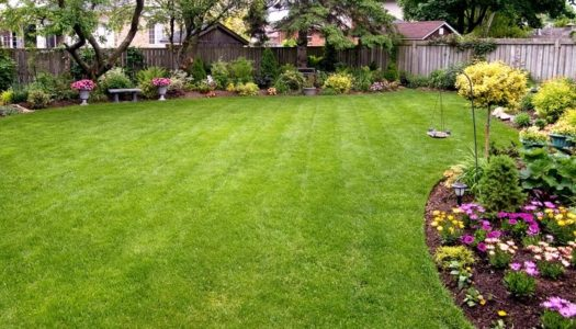How they grow! Lawns and Garden Care